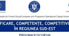 Calificare, Competențe, Competitivitate în Regiunea Sud Est